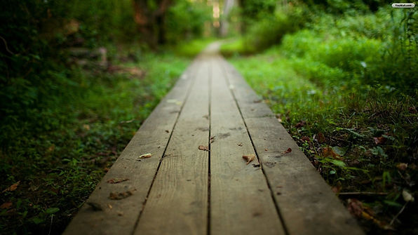 #Ecoway #KatiaVanHove
