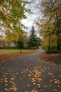 'A Walk in the Park', Kendal