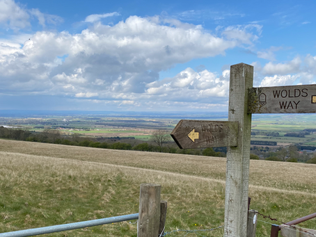 Walk along The Yorkshire Wolds Way from Wintringham