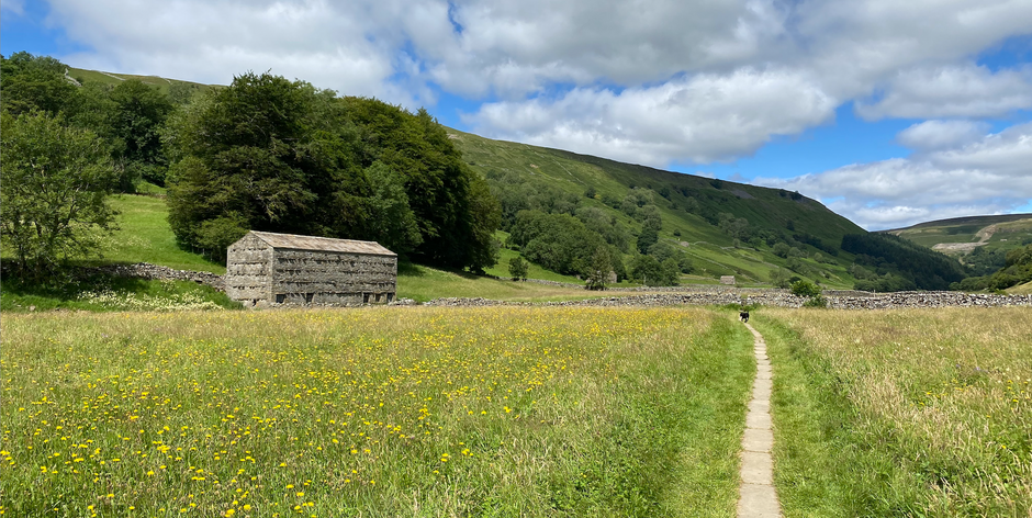 Muker to Crackpot Hall loop walk with stunning Swaledale views