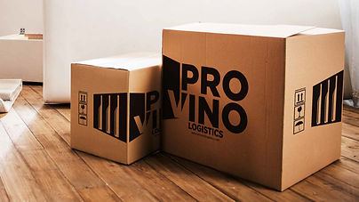 Provino Logo Design_Design Process.jpg