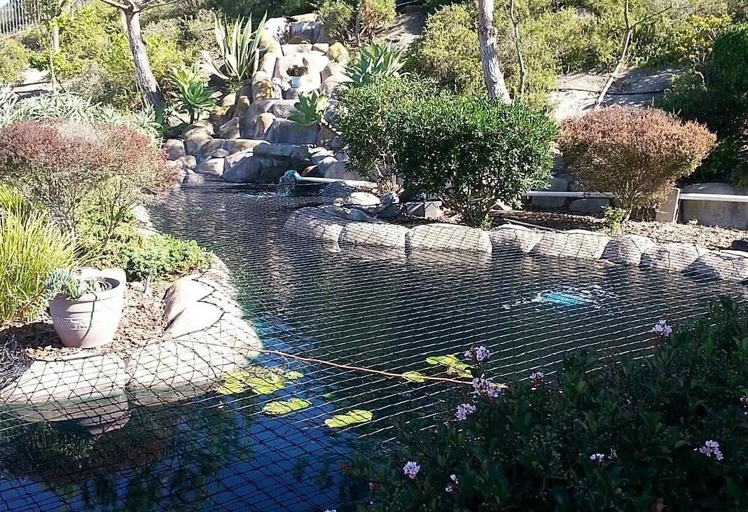 Complex Pond Shape Safety