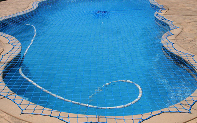 Pool Cleaner Under Net