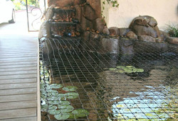 Koi Pond Safety Nets