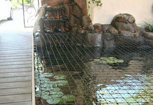 koi-pond-safety-net.jpg