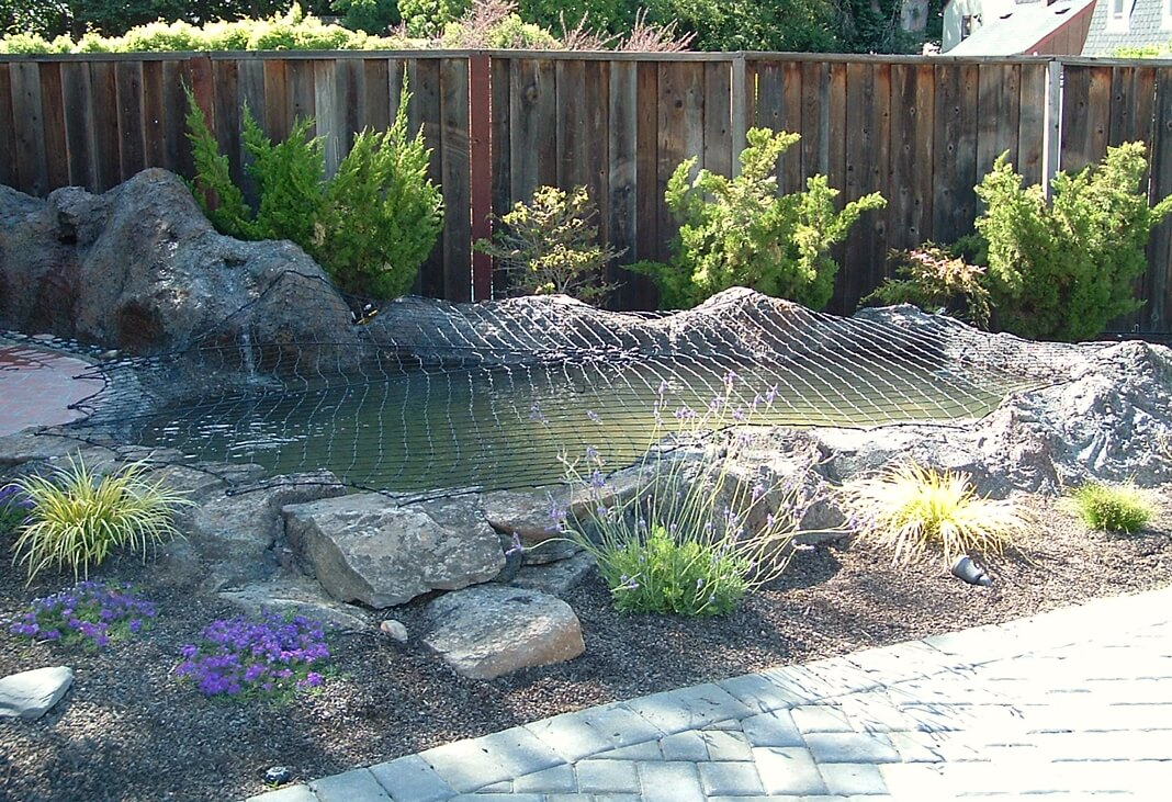 Fish Pond Safety