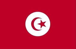 Tunisia flag.jpg