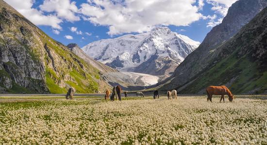 Kyrgysztan 2.jpg