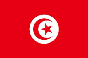 Tunisai Flag.png