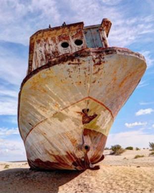 Aral 2.jpg