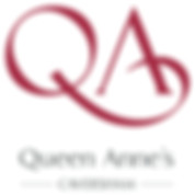 QA logo 2010_RGB p423&187 version.jpg