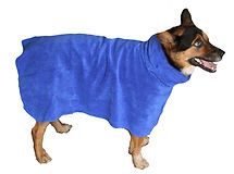 Corgi in a blue Snuggly Dog microfiber dog towel