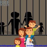Family in custody poster-01.jpg