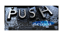 PUSH reduced copy.jpg