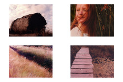 impressions1.jpg