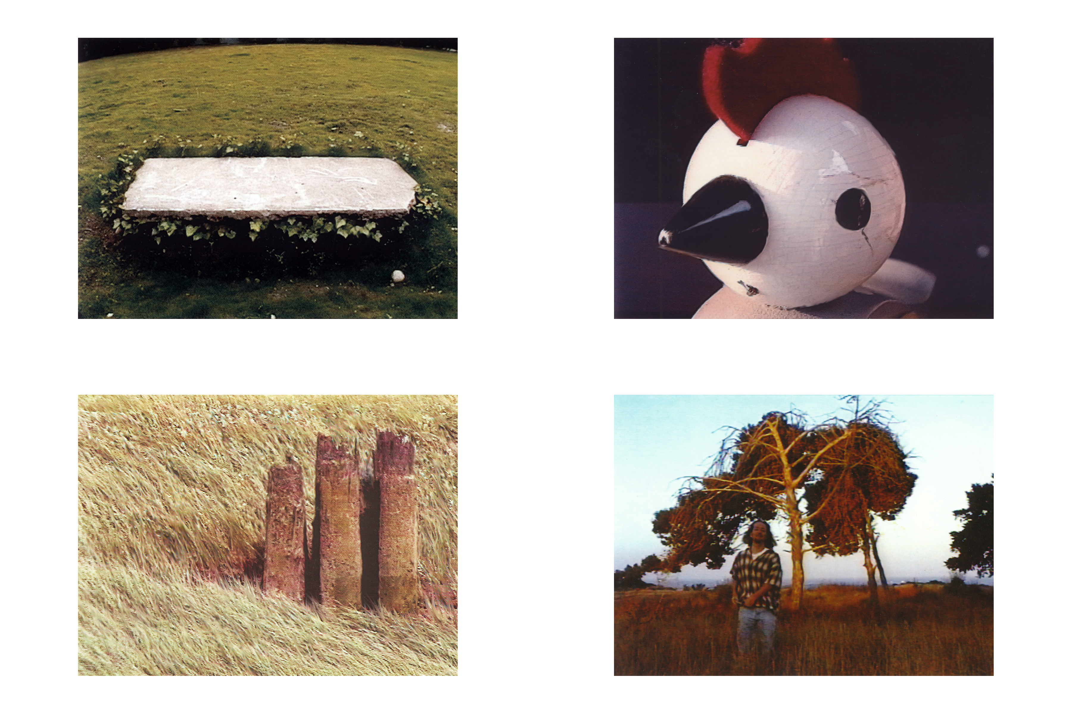 impressions 9.jpg
