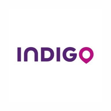 Indigo_edited.jpg