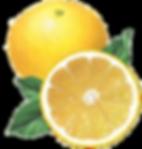檸檬.png