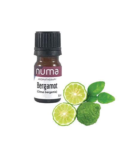 Numa Bergamot Essential Oil (15mL)