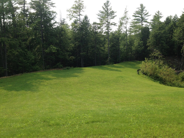 Field after 1.JPG