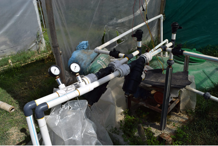 Hydroponics in Nepal - low-cost systems