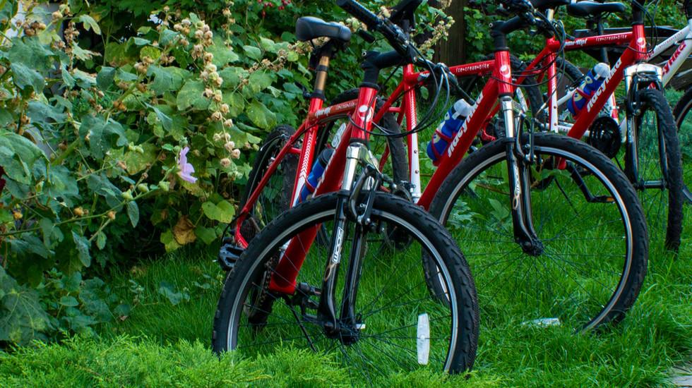Велосипеды.jpg