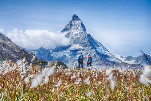 Hiking in the swiss alps with flower fie