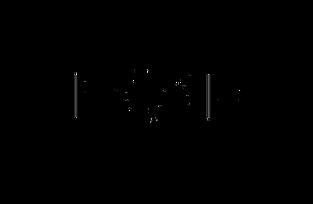 Logo_ECAH_Transparent Background.png