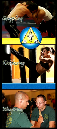 Hybrid Martial Arts - Banner