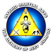 Hybrid Martial Arts - Florida's Premier Training Facility for Martial Arts