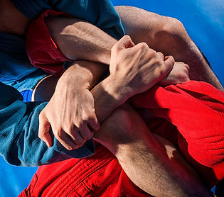 Hybrid Martial Arts - Wrestling - Grappling