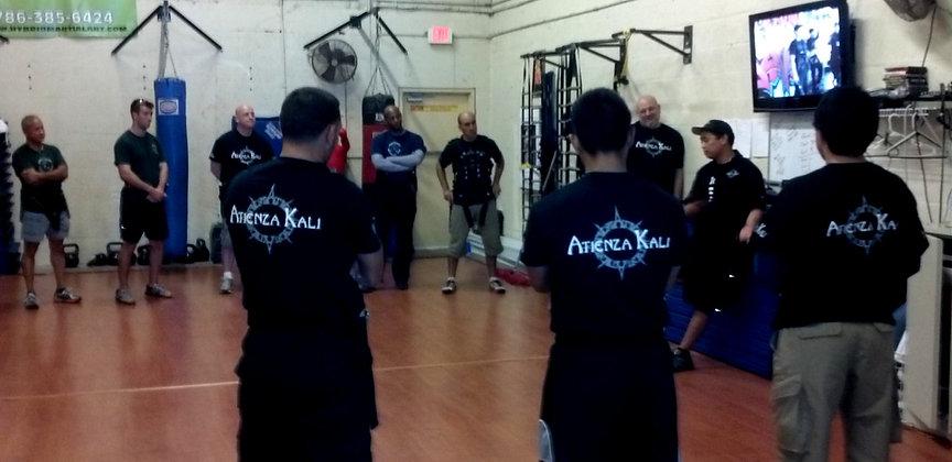 Atienza Trainig Session - Hybrid Martial Arts