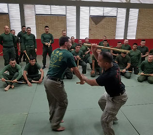 Hybrid Martial Arts - Filipino Martial Arts - Kali - Escrima - Arnis