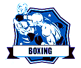 Hybrid Martial Arts - Boxing Logo