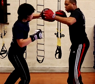 Hybrid Martial Arts - MMA - Mixed Martial Art