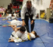 Hybrid Martial Arts - Little Tigers Program