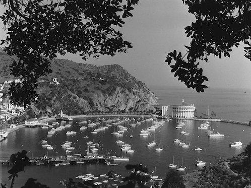 Avalon Bay Vintage Photo