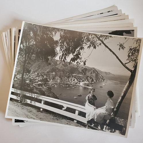 Vintage Bundle: Overlooking Avalon Bay