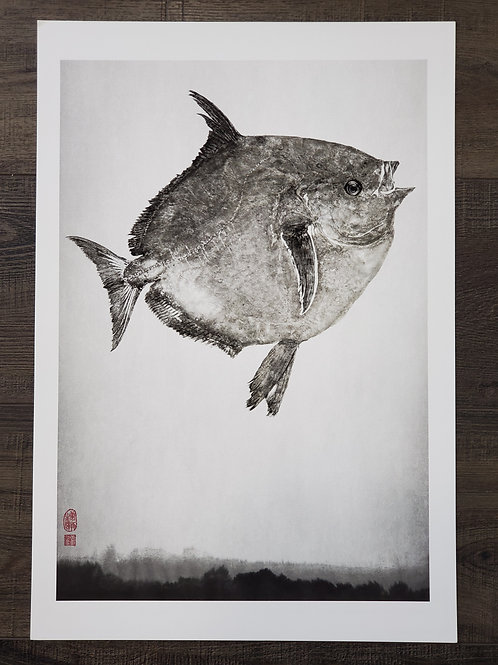 Opah Giclee Print