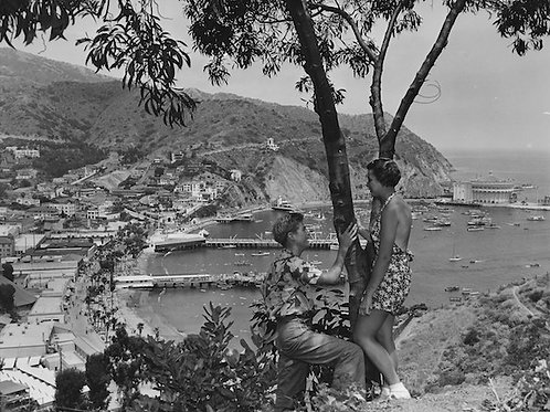 Overlooking Avalon Bay Vintage Photo No. 002