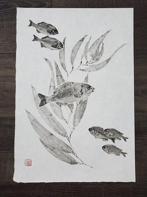 Perch & Kelp Washi Print