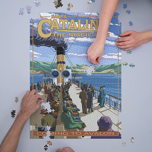 Steamership Puzzle