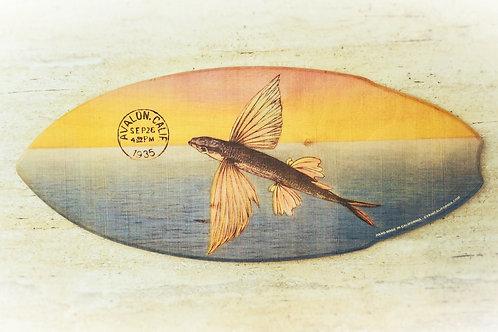 Flying Fish Postcard Mini Surfboard
