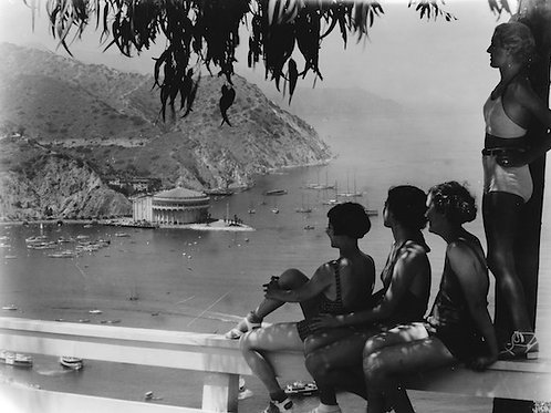Overlooking Avalon Bay Vintage Photo No. 003