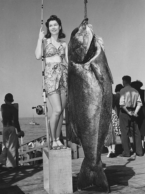 Big Catch: Photo No. 005