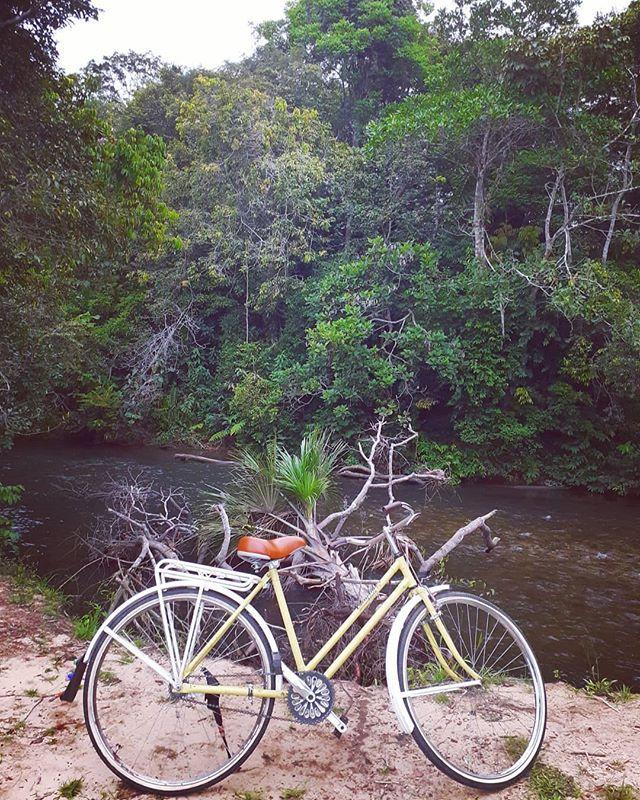 Sabrosura bicicletera es... pedalear has