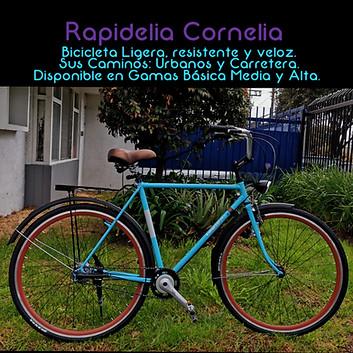 Rapidelia Cornelia