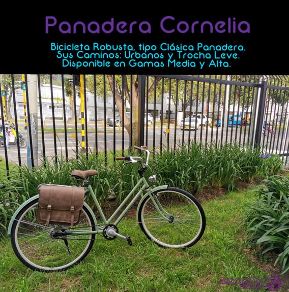 Panadera Cornelia