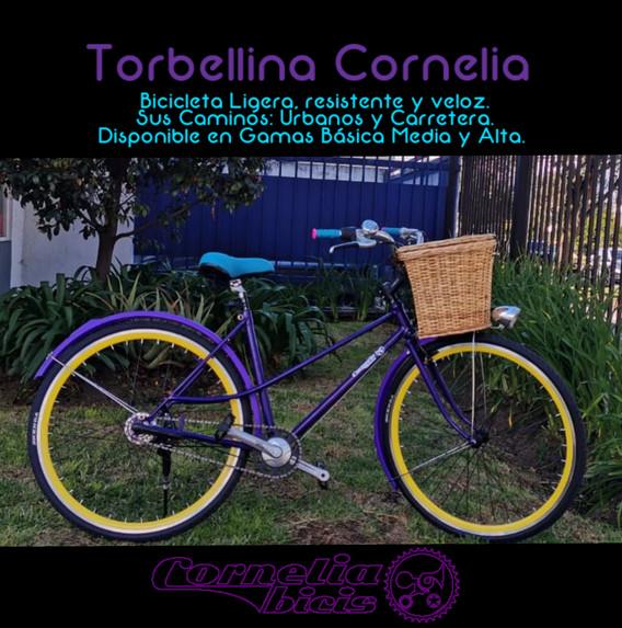 Torbellina Cornelia
