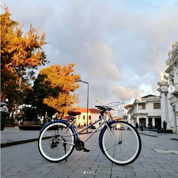 Screenshot_2020-10-27_Cornelia_Bicis_on_